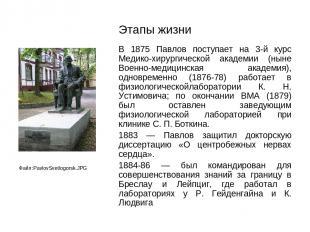 Этапы жизни В 1875 Павлов поступает на 3-й курс Медико-хирургической академии (н