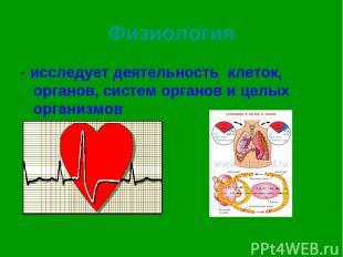 Физиология - исследует деятельность клеток, органов, систем органов и целых орга