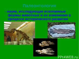 Палеонтология - наука, исследующая ископаемые формы животных и их изменения в пр