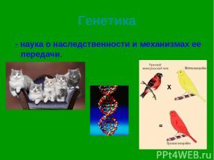 Генетика - наука о наследственности и механизмах ее передачи.