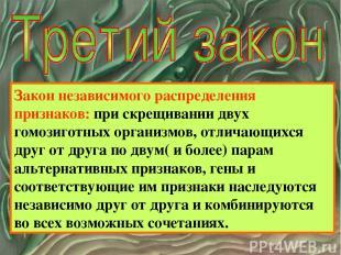 Закон независимого распределения признаков: при скрещивании двух гомозиготных ор