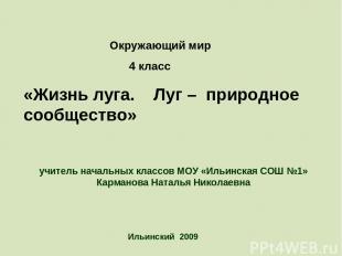 Ильинский 2009 учитель начальных классов МОУ «Ильинская СОШ №1» Карманова Наталь