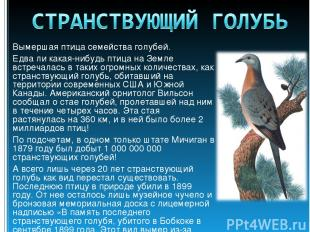 Вымершая птица семейства голубей. Едва ли какая-нибудь птица на Земле встречалас