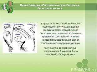 Книга Ламарка «Систематическая биология беспозвоночных» В труде «Систематическая