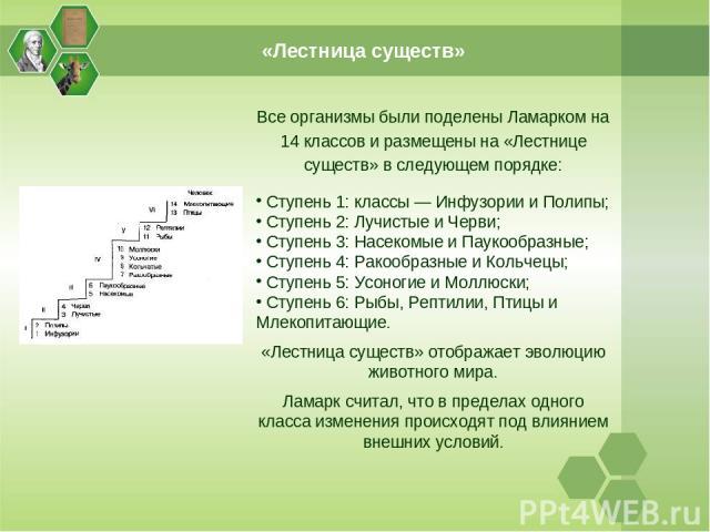 «Лестница существ» Все организмы были поделены Ламарком на 14 классов и размещены на «Лестнице существ» в следующем порядке: Ступень 1: классы — Инфузории и Полипы; Ступень 2: Лучистые и Черви; Ступень 3: Насекомые и Паукообразные; Ступень 4: Ракооб…