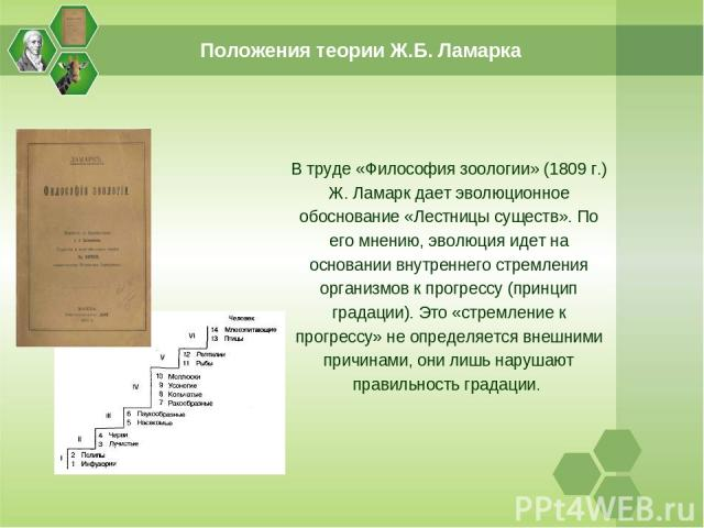 В труде «Философия зоологии» (1809 г.) Ж. Ламарк дает эволюционное обоснование «Лестницы существ». По его мнению, эволюция идет на основании внутреннего стремления организмов к прогрессу (принцип градации). Это «стремление к прогрессу» не определяет…