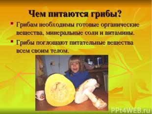 Чем питаются грибы? Грибам необходимы готовые органические вещества, минеральные