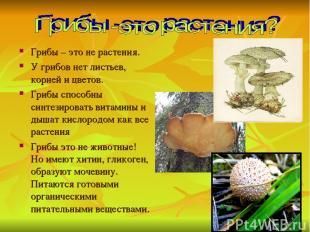 Грибы – это не растения. У грибов нет листьев, корней и цветов. Грибы способны с