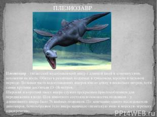 Плезиозавр– гигантский водоплавающий ящер с длинной шеей и конечностями, похожи