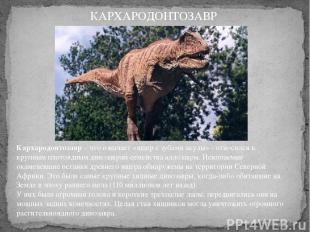 Кархародонтозавр– что означает «ящер с зубами акулы» - относился к крупным плот