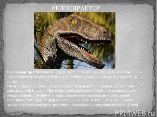 Велоцирапторотносился к отряду ящеротазовых динозавров. Место обитания – террит