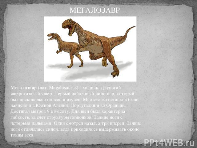 Мегалозавр(лат. Megalosaurus) - хищник. Двуногий ящеротазовый ящер. Первый найденный динозавр, который был досконально описан и изучен. Множество останков было найдено и в Южной Англии, Португалии и во Франции. Достигал метров 9 в высоту. Для шеи б…