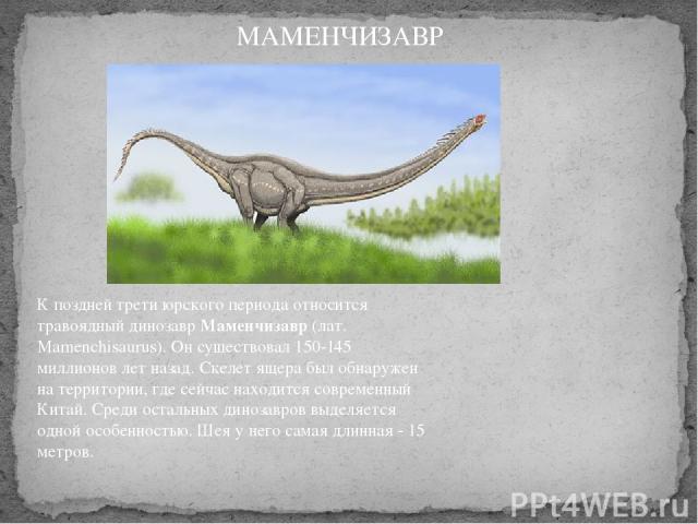 К поздней трети юрского периода относится травоядный динозаврМаменчизавр(лат. Mamenchisaurus). Он существовал 150-145 миллионов лет назад. Скелет ящера был обнаружен на территории, где сейчас находится современный Китай. Среди остальных динозавров…