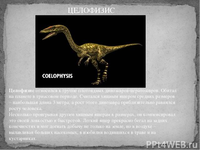 Целофизисотносился к группе плотоядных динозавров-цератозавров. Обитал на планете в триасовом периоде. Считался хищным ящером средних размеров – наибольшая длина 3 метра, а рост этого динозавра приблизительно равнялся росту человека. Несколько про…