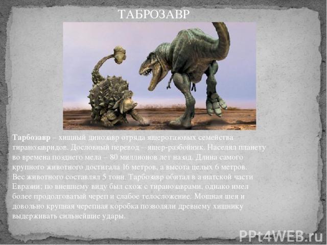 Тарбозавр– хищный динозавр отряда ящеротазовых семейства тиранозавридов. Дословный перевод – ящер-разбойник. Населял планету во времена позднего мела – 80 миллионов лет назад. Длина самого крупного животного достигала 16 метров, а высота целых 6 ме…