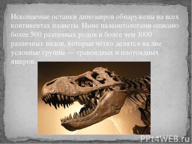 Ископаемые останки динозавров обнаружены на всех континентах планеты. Ныне палеонтологами описано более 500 различных родов и более чем 1000 различных видов, которые чётко делятся на две условные группы — травоядных и плотоядных ящеров.