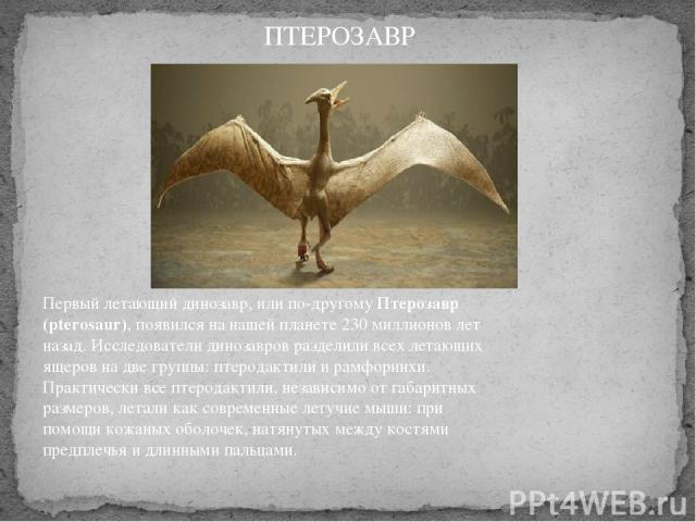Первый летающий динозавр, или по-другомуПтерозавр (pterosaur), появился на нашей планете 230 миллионов лет назад. Исследователи динозавров разделили всех летающих ящеров на две группы: птеродактили и рамфоринхи. Практически все птеродактили, незав…