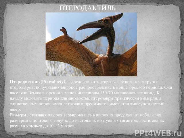 Птеродактиль (Pterodactyl)– дословно «птицекрыл» – относился к группе птерозавров, получивших широкое распространение в конце юрского периода. Они населяли Землю в юрский и меловой периоды 150-70 миллионов лет назад. К началу мелового периода длинн…