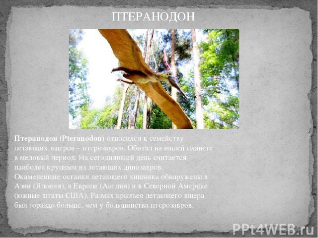 Птеранодон (Pteranodon)относился к семейству летающих ящеров – птерозавров. Обитал на нашей планете в меловый период. На сегодняшний день считается наиболее крупным из летающих динозавров. Окаменевшие останки летающего хищника обнаружены в Азии (Я…