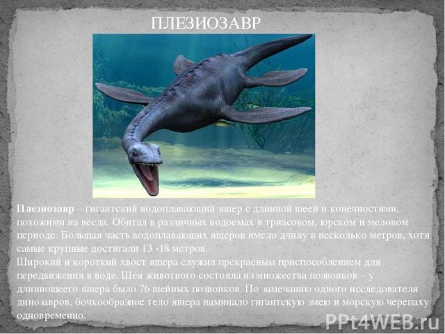 Плезиозавр– гигантский водоплавающий ящер с длинной шеей и конечностями, похожими на вёсла. Обитал в различных водоемах в триасовом, юрском и меловом периоде. Большая часть водоплавающих ящеров имело длину в несколько метров, хотя самые крупные дос…