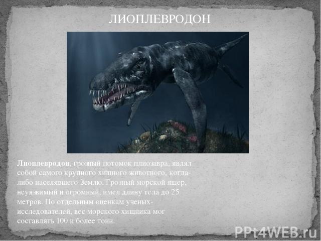 Лиоплевродон, грозный потомок плиозавра, являл собой самого крупного хищного животного, когда-либо населявшего Землю. Грозный морской ящер, неуязвимый и огромный, имел длину тела до 25 метров. По отдельным оценкам ученых-исследователей, вес морского…
