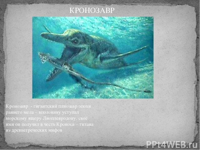 Кронозавр - гигантский плиозавр эпохи раннего мела – вполовину уступал морскому ящеру Лиоплевродону. своё имя он получил в честь Кроноса – титана из древнегреческих мифов КРОНОЗАВР