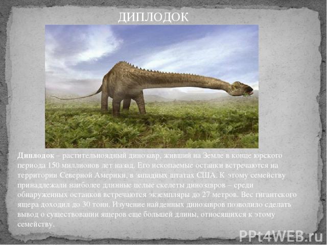Диплодок– растительноядный динозавр, живший на Земле в конце юрского периода 150 миллионов лет назад. Его ископаемые останки встречаются на территории Северной Америки, в западных штатах США. К этому семейству принадлежали наиболее длинные целые ск…