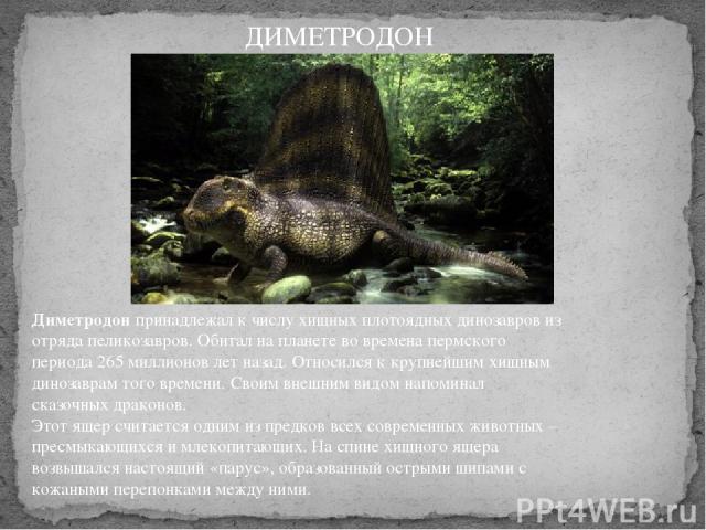 Диметродонпринадлежал к числу хищных плотоядных динозавров из отряда пеликозавров. Обитал на планете во времена пермского периода 265 миллионов лет назад. Относился к крупнейшим хищным динозаврам того времени. Своим внешним видом напоминал сказочны…