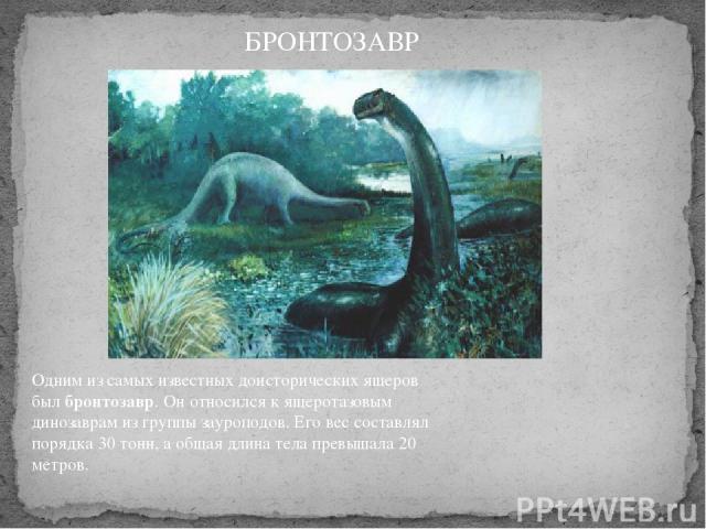 Одним из самых известных доисторических ящеров былбронтозавр. Он относился к ящеротазовым динозаврам из группы зауроподов. Его вес составлял порядка 30 тонн, а общая длина тела превышала 20 метров. БРОНТОЗАВР