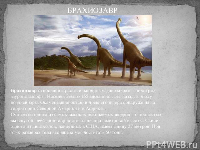 Брахиозавротносился к растительноядным динозаврам – подотряд зауроподморфы. Населял Землю 155 миллионов лет назад: в эпоху поздней юры. Окаменевшие останки древнего ящера обнаружены на территории Северной Америки и в Африке. Считается одним из сам…