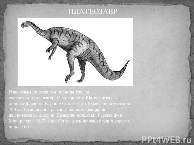 Известным динозавром периода триаса считаетсяплатеозавр. С латинскогоPlateosaurus— «плоский ящер». В длину был от 6 до 10 метров, а весом до 700 кг. Относится к разряду завроподоморфов, ящеротазовых ящеров. Название придумал Герман фон Майер еще …
