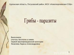 Курганская область, Петуховский район, МОУ «Новогеоргиевская СОШ» Выполнила: учи
