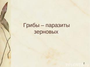 Грибы – паразиты зерновых Яковлева Л.А.