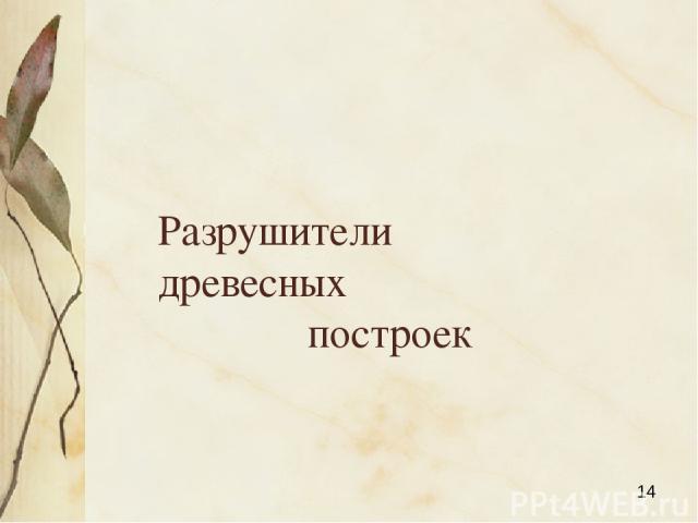 Разрушители древесных построек Яковлева Л.А.