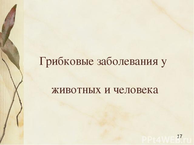 Грибковые заболевания у животных и человека Яковлева Л.А.