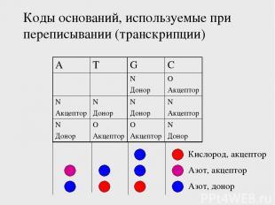 Коды оснований, используемые при переписывании (транскрипции) Кислород, акцептор