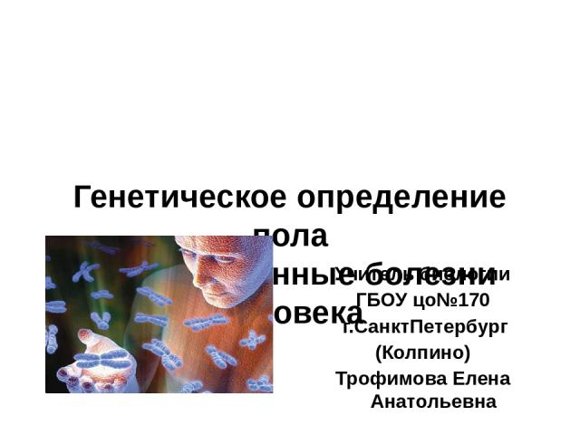 Генетическое определение пола Наследственные болезни человека Учитель биологии ГБОУ цо№170 г.СанктПетербург (Колпино) Трофимова Елена Анатольевна