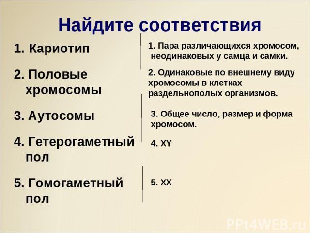 Найдите соответствия Кариотип 2. Половые хромосомы 3. Аутосомы 4. Гетерогаметный пол 5. Гомогаметный пол 1. Пара различающихся хромосом, неодинаковых у самца и самки. 2. Одинаковые по внешнему виду хромосомы в клетках раздельнополых организмов. 3. О…