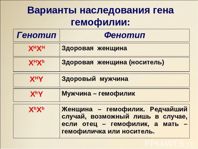 Варианты наследования гена гемофилии: Генотип Фенотип XHXH Здоровая женщина XHXh Здоровая женщина (носитель) XHY Здоровый мужчина XhY Мужчина – гемофилик XhXh Женщина – гемофилик. Редчайший случай, возможный лишь в случае, если отец – гемофилик, а м…
