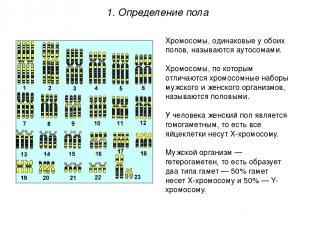 Хромосомы, одинаковые у обоих полов, называются аутосомами. Хромосомы, по которы