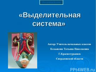«Выделительная система» Автор: Учитель начальных классов Козьякова Татьяна Никол