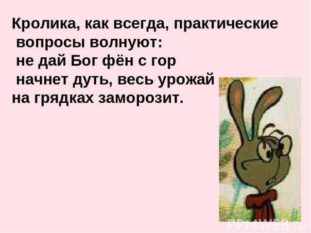 Кролика, как всегда, практические вопросы волнуют: не дай Бог фён с гор начнет дуть, весь урожай на грядках заморозит.