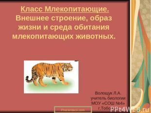 Класс Млекопитающие. Внешнее строение, образ жизни и среда обитания млекопитающи