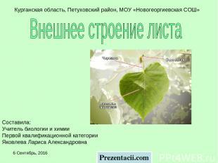 * Курганская область, Петуховский район, МОУ «Новогеоргиевская СОШ» Составила: У