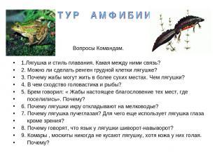 Вопросы Командам. 1.Лягушка и стиль плавания. Какая между ними связь? 2. Можно л