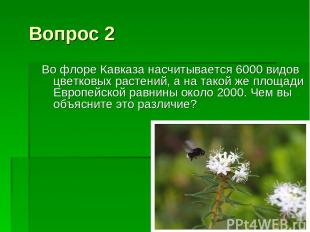 Вопрос 2 Во флоре Кавказа насчитывается 6000 видов цветковых растений, а на тако