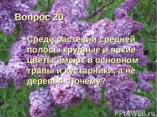 Вопрос 20 Среди растений средней полосы крупные и яркие цветы имеют в основном т