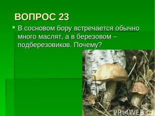 ВОПРОС 23 В сосновом бору встречается обычно много маслят, а в березовом – подбе