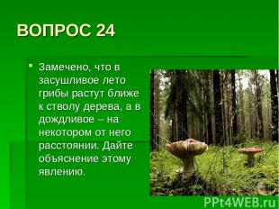 ВОПРОС 24 Замечено, что в засушливое лето грибы растут ближе к стволу дерева, а