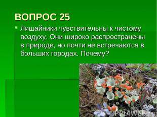 ВОПРОС 25 Лишайники чувствительны к чистому воздуху. Они широко распространены в